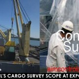 Pre-loading survey / Loading inspection